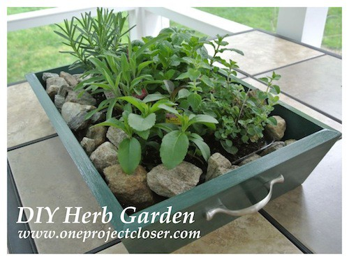 Drawer Planter Box